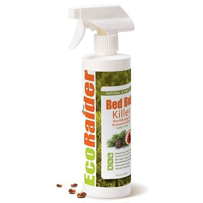 51Io148NRTL. SL1000  - Bed Bug Spray Reviews